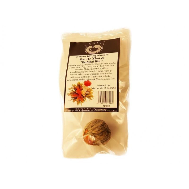 Kvetoucí čaj (Bai He Xian Zi) Oxalis - 1 ks