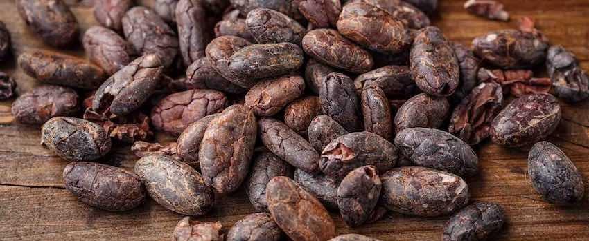 Objevte sílu kakaových bobů