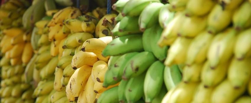 5 využití banánové mouky v kuchyni
