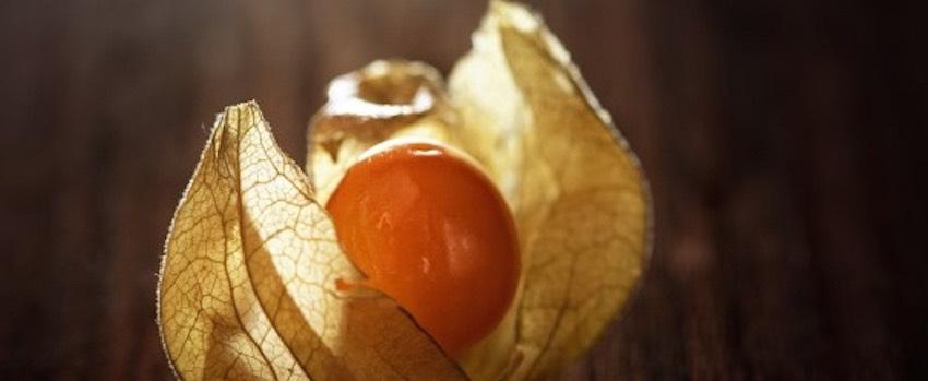 Golden berries – pochoutka plná živin
