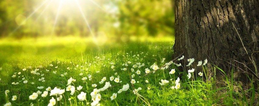 Jaro a půsty