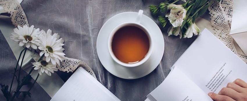 Znáte čaj rooibos?